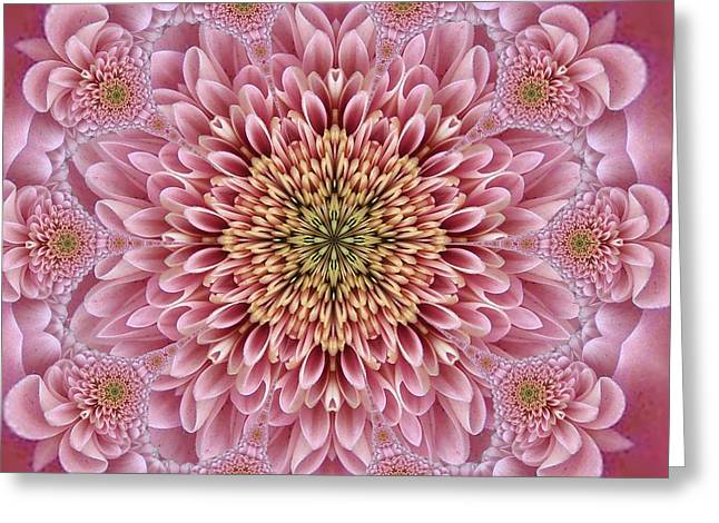 Chrysanthemum Beauty Greeting Card