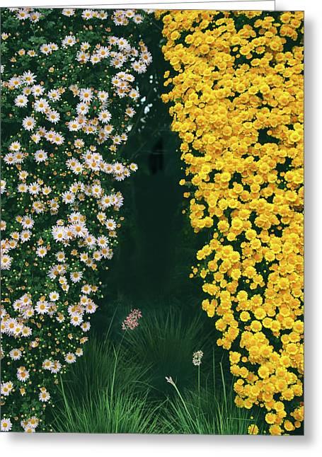 Chrysanthemum Curtains Greeting Card by Jessica Jenney
