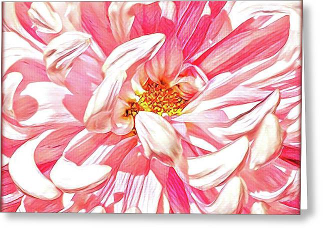 Chrysanthemum In Pink Greeting Card by Shadia Derbyshire
