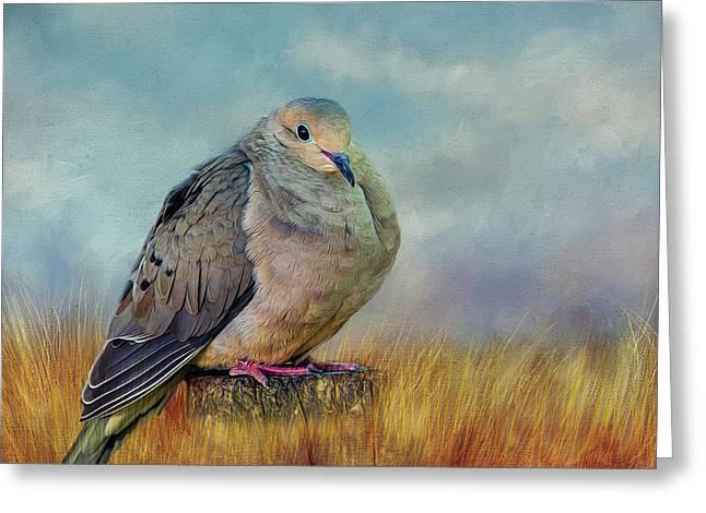 Chubby Dove Greeting Card