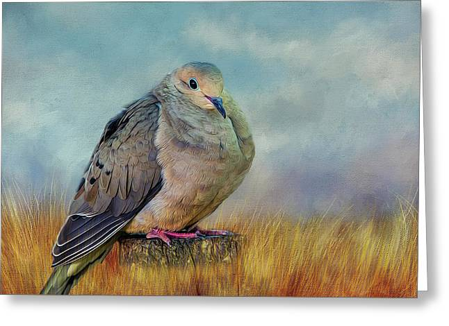 Chubby Dove Greeting Card