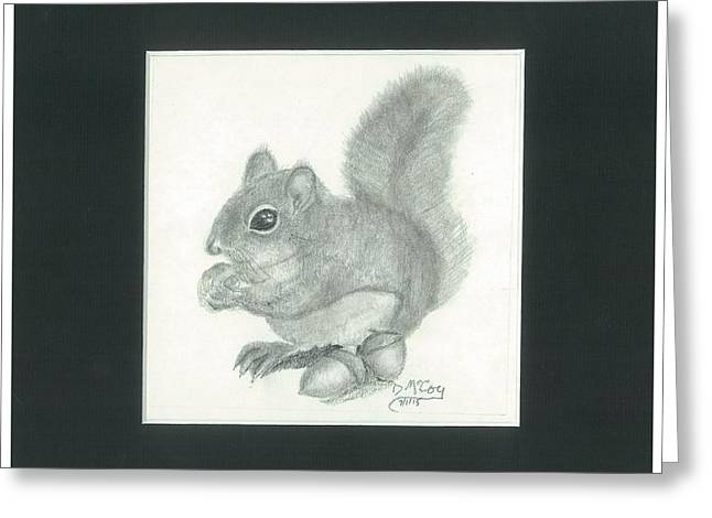 Chubby Squirrel With Acorns Greeting Card