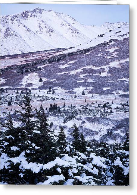Chugach In Alpenglow Greeting Card