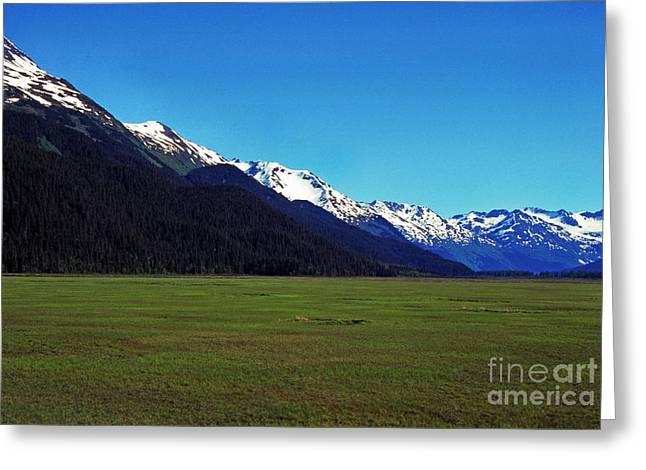 Chugach Mountains Green Plain Greeting Card by Thomas R Fletcher