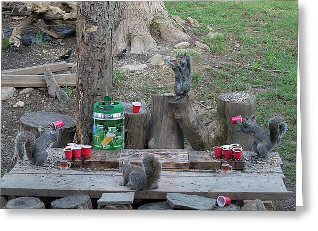 Chugging Squirrels At Beer Pong Greeting Card