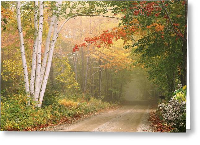 Cilley Hill Road In Underhill Vermont. Greeting Card