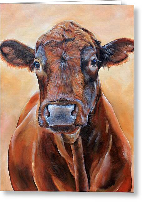 Angus Steer Greeting Cards - Cinnabar    Greeting Card by Laura Carey