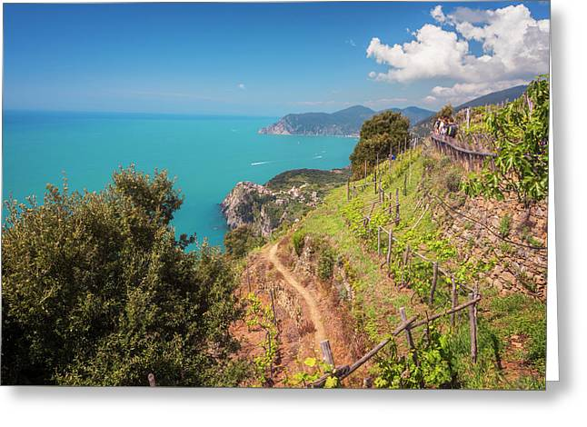 Cinque Terre Italy Vineyard Walk Greeting Card