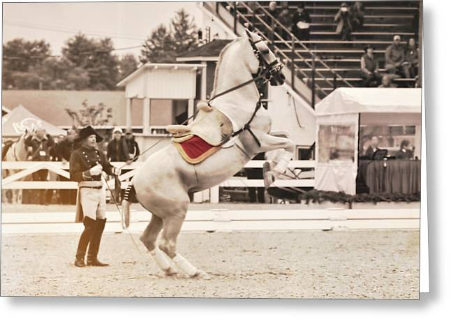 Greeting Card featuring the photograph Circa 1580 by Dressage Design