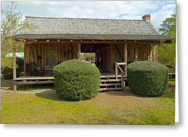 Circa 1900 Dogtrot Cabin Of Ephriam Brown From Lake Mills Florida Greeting Card