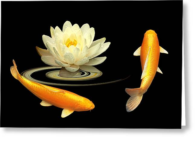 Circle Of Life - Koi Carp With Water Lily Greeting Card by Gill Billington