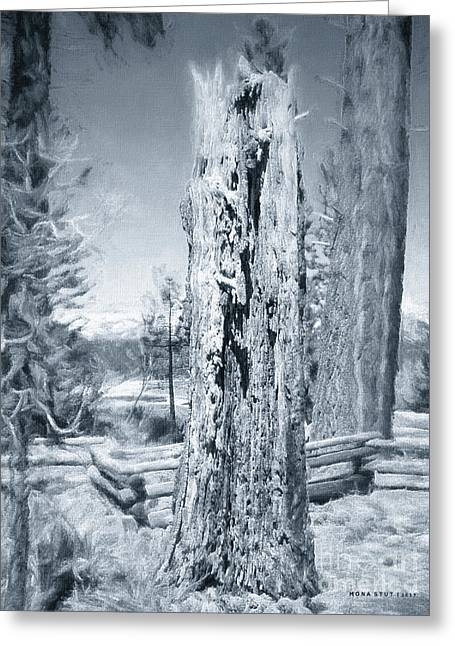 Circle Of Life Tree Trunk Black White Greeting Card by Mona Stut