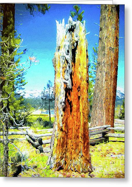 Circle Of Life Tree Trunk Greeting Card by Mona Stut