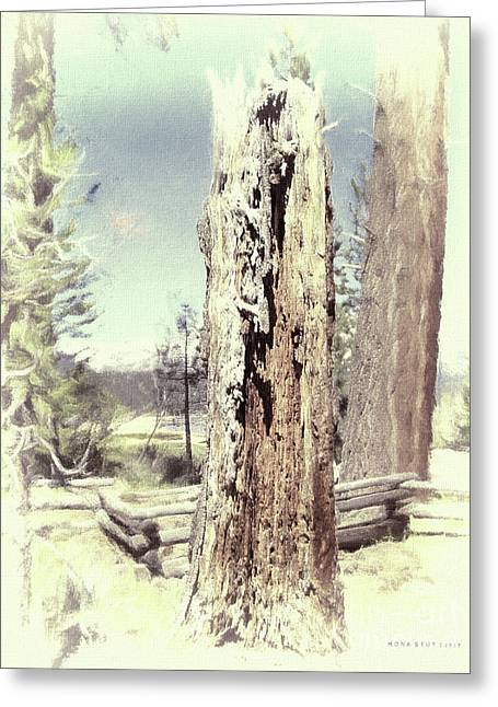 Circle Of Life Vintage Tree Trunk Greeting Card by Mona Stut