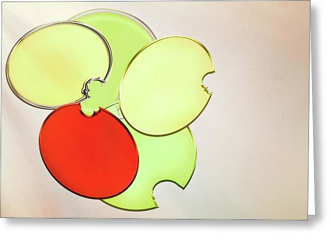 Circles Of Red, Yellow And Green Greeting Card