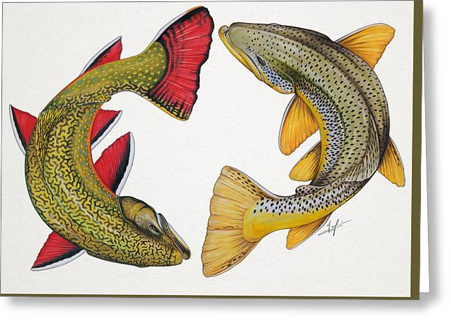 Circling Brook And Brown Trout Greeting Card by Nick Laferriere