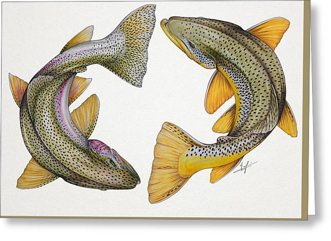 Circling Rainbow And Brown Trout Greeting Card by Nick Laferriere