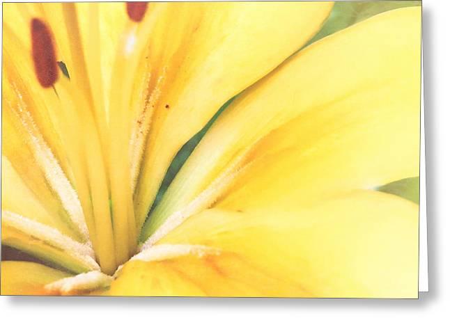 Citrine Blossom Greeting Card