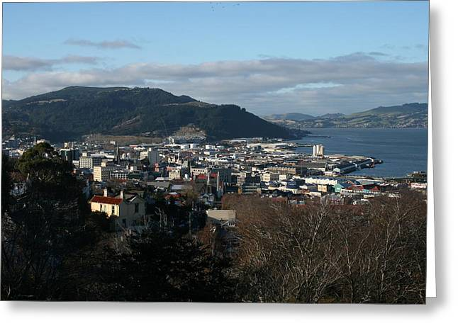 City Of Dunedin From Unity Park Greeting Card