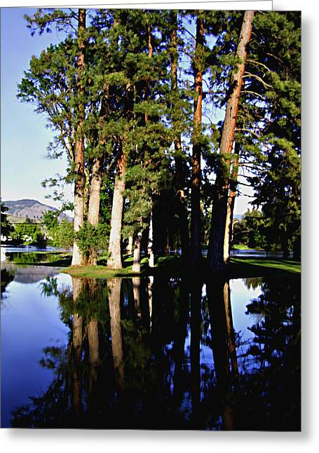 City Park Kettle River Grand Forks Bc Greeting Card by Barbara St Jean