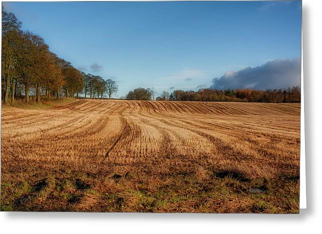 Greeting Card featuring the photograph Clackmannanshire Countryside by Jeremy Lavender Photography