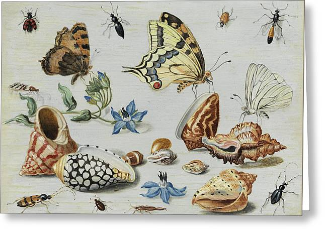 Clams, Butterflies, Flowers And Insects Greeting Card