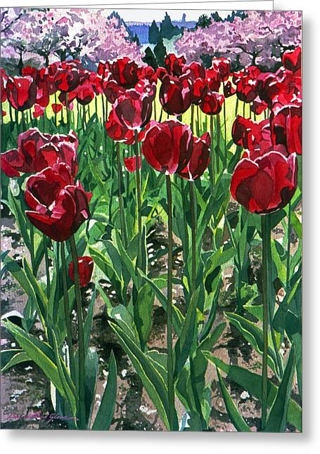 Claret Tulips  Greeting Card by David Lloyd Glover