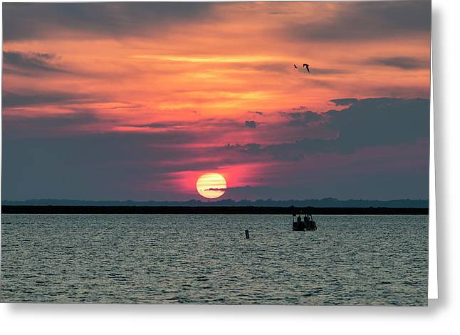 Classic Buffalo Sunset Greeting Card