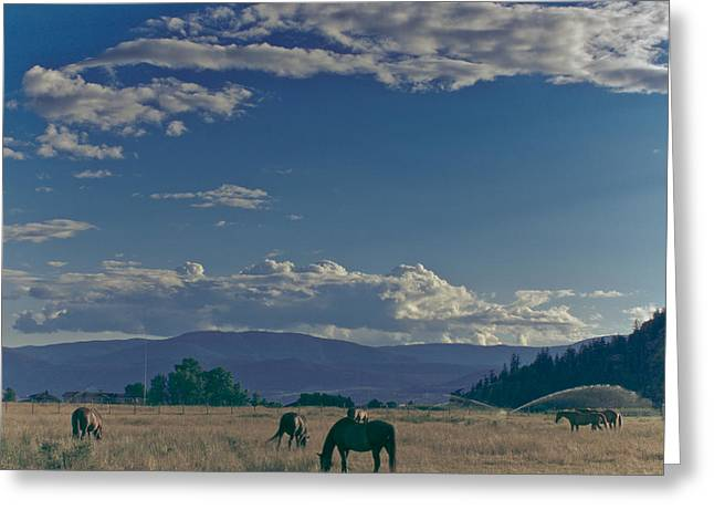 Classic Country Scene Greeting Card