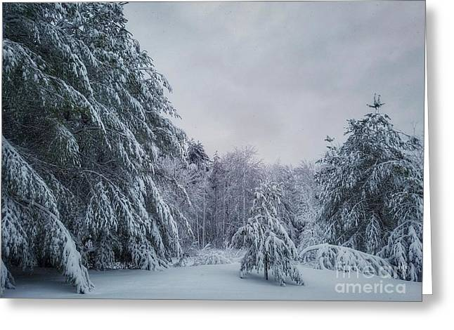 Classic Winter Scene In New England  Greeting Card