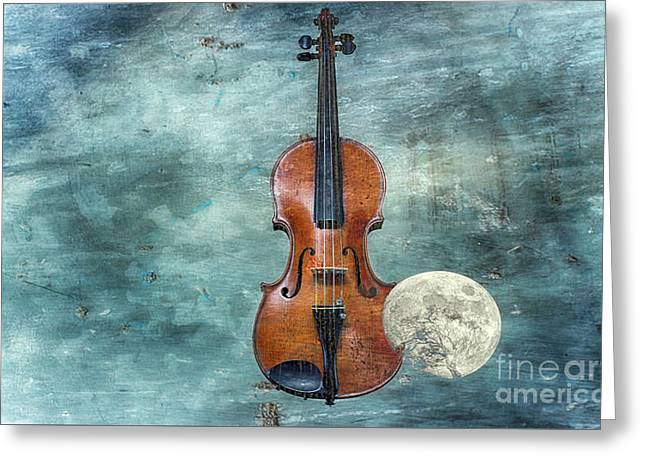 Classical Space   Greeting Card by Steven Digman