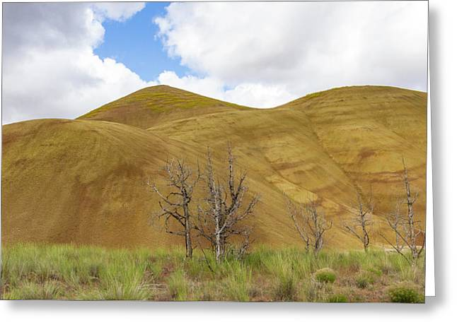 Clear Sky At Painted Hills Greeting Card by Jean Noren