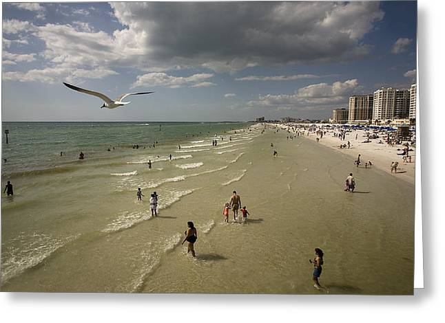 Clear Water Beach Greeting Card by Patrick Ziegler