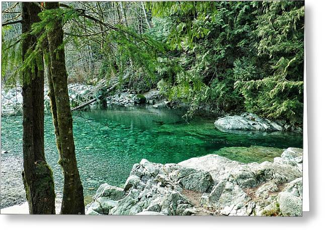 Clear Water Sanctuary Greeting Card
