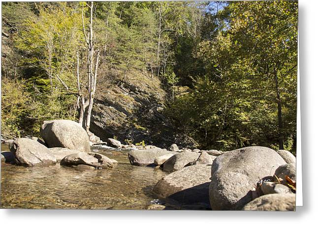 Clear Water Stream Greeting Card