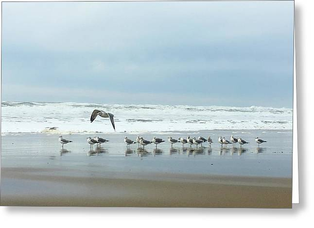 Cleared For Takeoff Greeting Card by Donna Blackhall