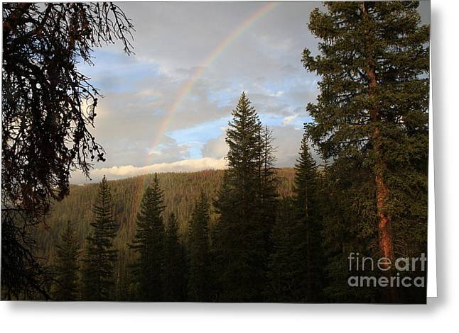 Clearing Rain And Rainbow Greeting Card by Edward R Wisell