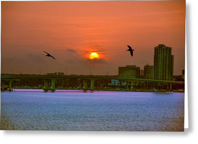 Clearwater At Sunrise Greeting Card by Bill Cannon