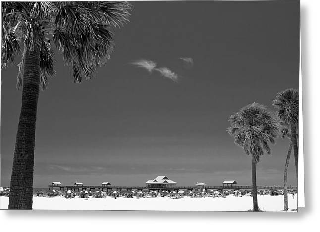 Florida Gulf Coast Greeting Cards - Clearwater Beach BW Greeting Card by Adam Romanowicz