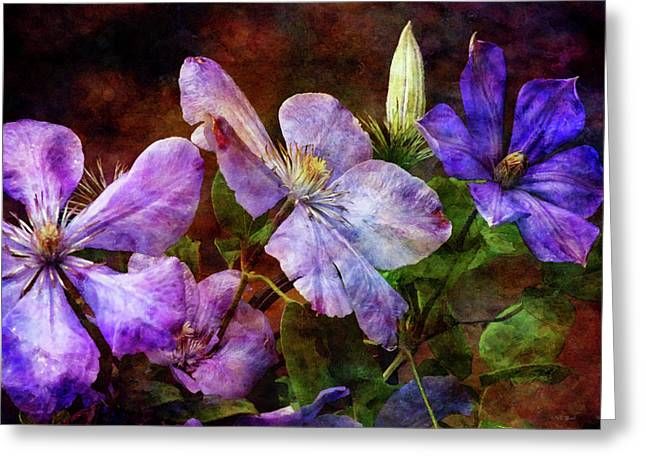 Clematis 1330 Idp_2 Greeting Card