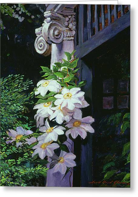 Clematis Blossoms Greeting Card by David Lloyd Glover