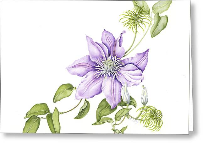 Clematis Cezanne Greeting Card
