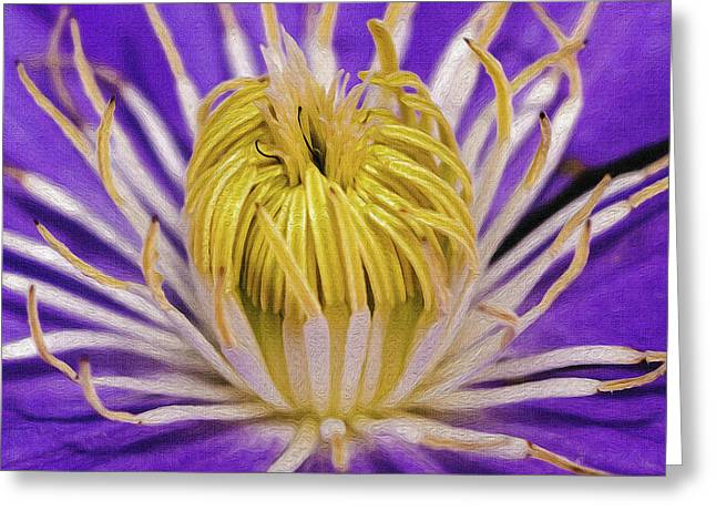 Clematis Macro Greeting Card