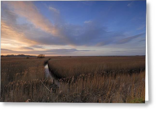 Cley Marshes  Greeting Card by Liz Pinchen
