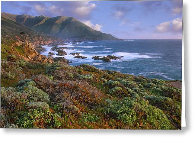 Cliffs And The Pacific Ocean Garrapata Greeting Card by Tim Fitzharris