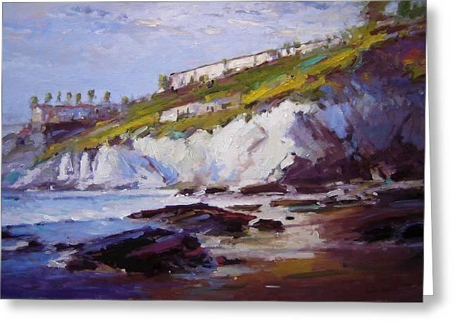 Cliffs At Pismo Beach Xx Greeting Card