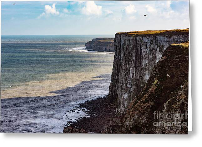Greeting Card featuring the photograph Cliffs Of Bempton by Anthony Baatz