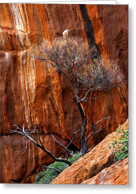 Clinging To Life Greeting Card by Mike  Dawson