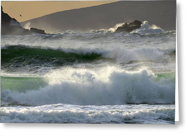 Clogher Beach In Kerry Greeting Card