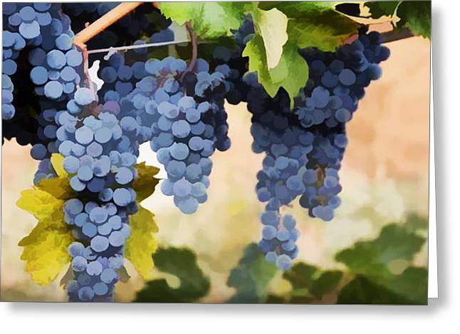 Close Up Of  Grapes Hanging On The Vine  Greeting Card